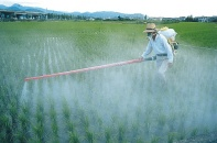 pesticides1368621907